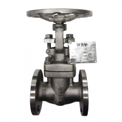 SERIE GT039 25MM FLANGED RF RISING STEM/BOLTED BONNET GATE VALVE