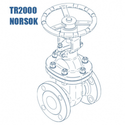 tr2000-gate-valve.png