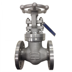 SERIE GT084 20MM FLANGED RF ANSI 150 RISING STEM/BOLTED BONNET GATE VALVE