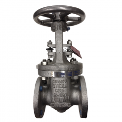 SERIE GT084 50MM FLANGED RF ANSI 150 RISING STEM/BOLTED BONNET GATE VALVE