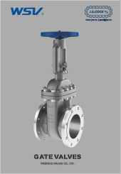 Weidouli Gate Valves (Special Alloy Valves)