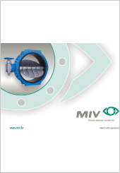 MIV Company Profile